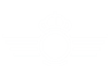 Logo of the Spanish Air Force